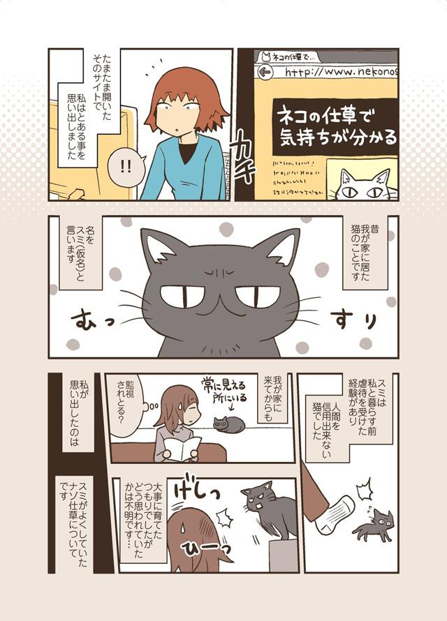 猫の仕草が気持ちでわかる