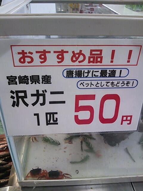 スーパーでみつけた面白すぎる値札の誤植&チラシまとめ:沢ガニ1匹50円(唐揚げに最適!ペットとしてもどうぞ!)