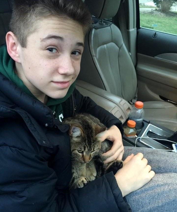 車から放り出された猫を救った少年