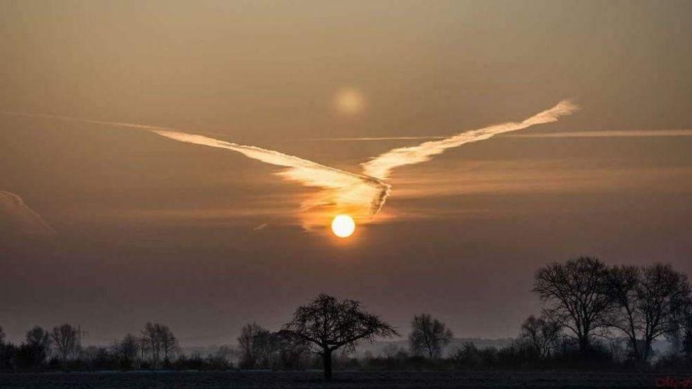 奇跡の瞬間を捉えた貴重な写真・画像まとめ:フェニックス(不死鳥)の雲