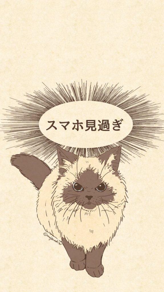 スマホ見すぎ 叱る 猫
