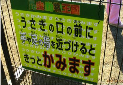 ウサギ ざっくり 警告