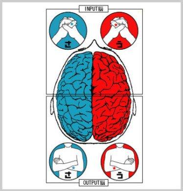 腕を組んだ時、指を組んだ時の場所で右脳か左脳かわかる診断テストが話題に!【心理テスト】