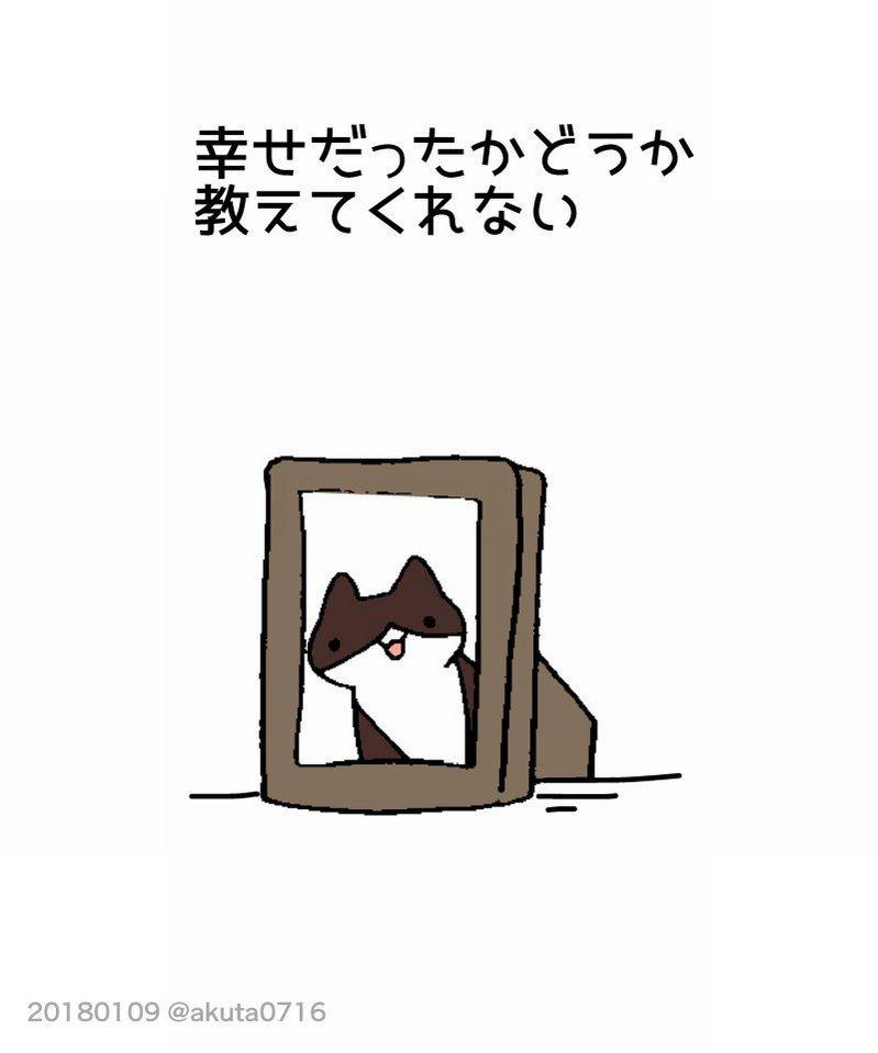 【数分休むつもりが数時間吸い取られる】すべての人に知ってほしい「猫を飼うのは大変だ!でも」という投稿が思わず泣ける