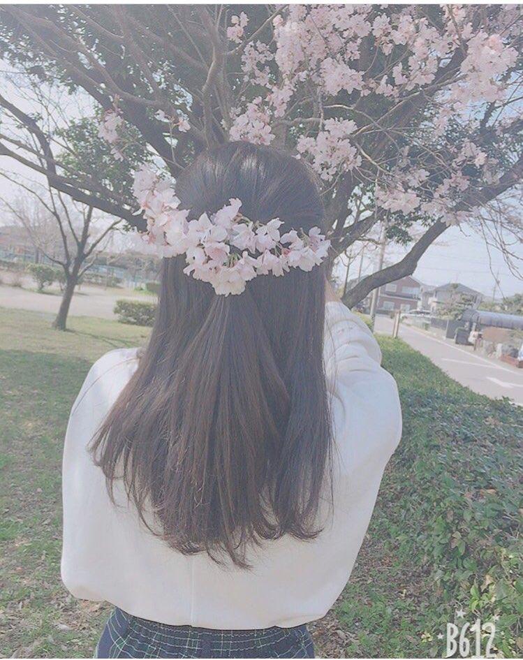 インスタ映えのために桜の枝を折るインスタグラマーが増加!桜は枝を折るとそこから腐敗が進むので絶対に辞めてください!