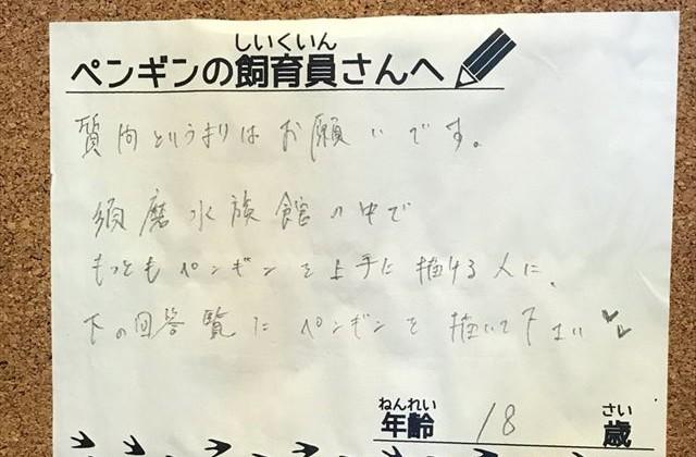 【須磨海浜水族園】「一番上手な人がペンギンを描いてください」という要望に飼育員が本気モードになった結果・・・