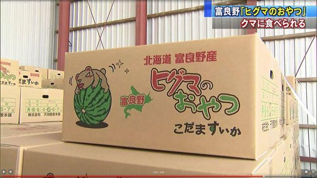富良野市でスイカ畑がクマの被害に→そのスイカの名前が「ヒグマのおやつ」