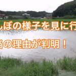 【死亡フラグ!?】台風や大雨の時に「ちょっと田んぼの様子をみてくる」の真の理由が判明!