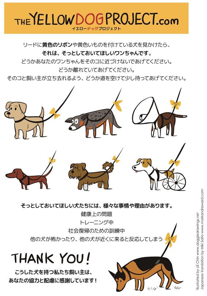 【拡散希望】リードに黄色のリボンをつけた犬を見つけたらそっとしておいてあげて欲しい