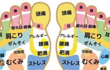 【内臓だとわからない人へ】足裏で病気や体調不良との関係がわかる画像