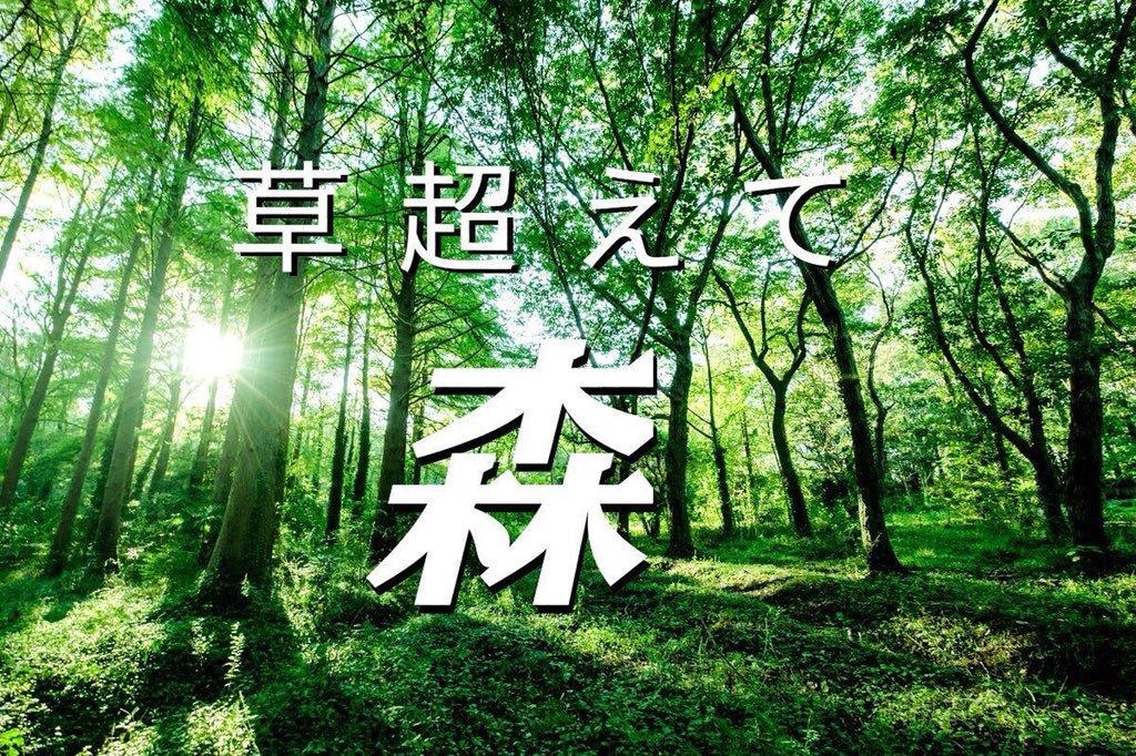 草超えて森