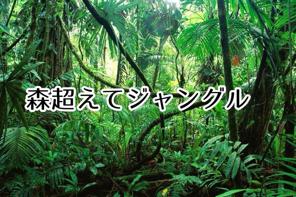 森超えてジャングル