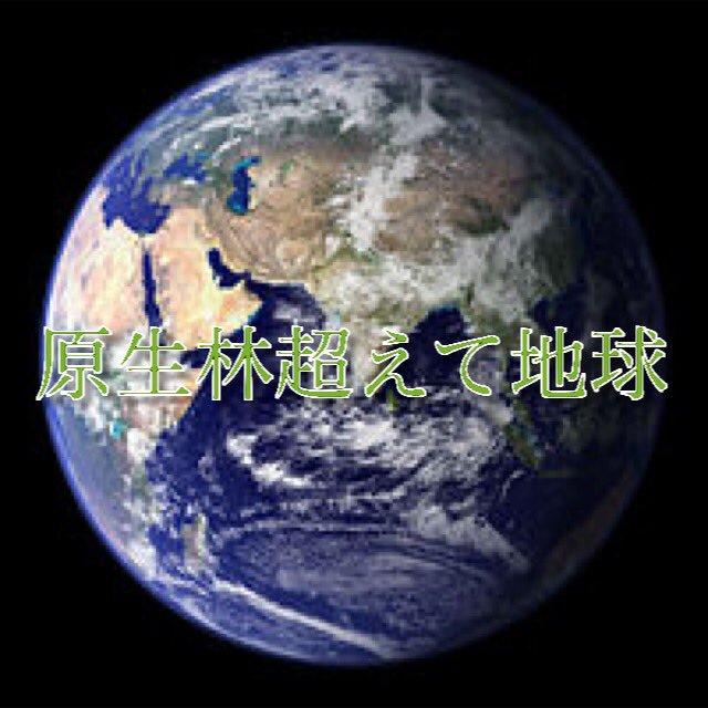 原生林超えて地球
