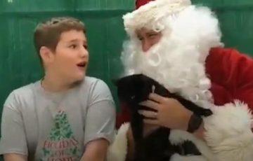 【絶対泣ける動画】犬猫シェルターでボランティアをしている男の子がクリスマスプレゼントにもらったものに多くの人が感動!