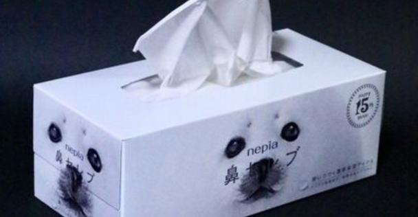 鼻セレブの箱を使って工作した作品がクオリティ高すぎだと話題に!「公式で採用して欲しい」