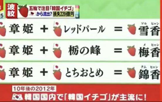 韓国産いちごは日本の品種の掛け合わせ