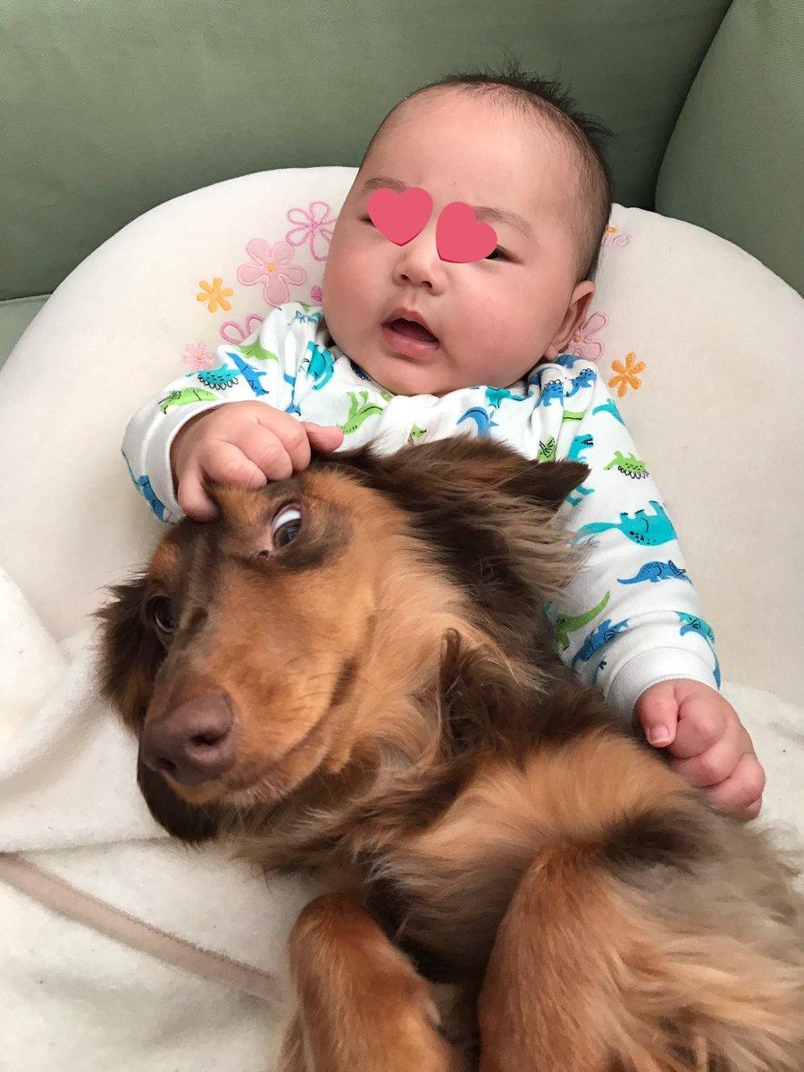 【子育てあるある?】投稿した育児衝撃画像が可愛くて面白いと話題に!