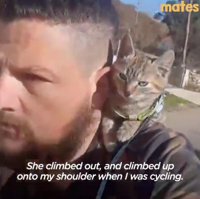 【最高の動画】自転車やバイクで世界を巡っている男性が必死で追いかけてくる子猫を拾った話