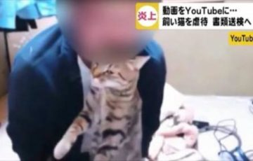 【岐阜猫虐待】ネコを投げつけたり噛むなどした山下喜洋の顔画像や住所は?【動画有】