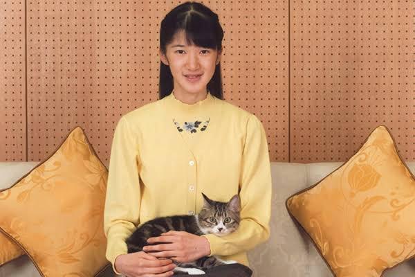 愛子さまの飼ってる保護猫のニンゲンちゃん