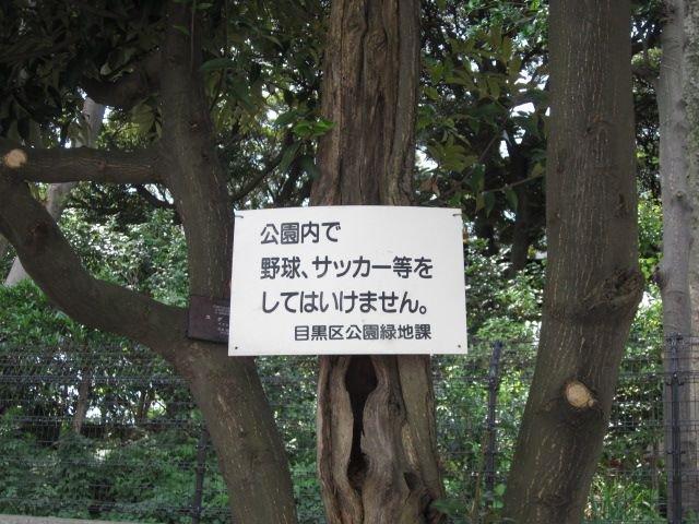 遊びがどんどん禁止になっていく公園→子どもは外遊びしなくなったのではなくできなくなってきている現実