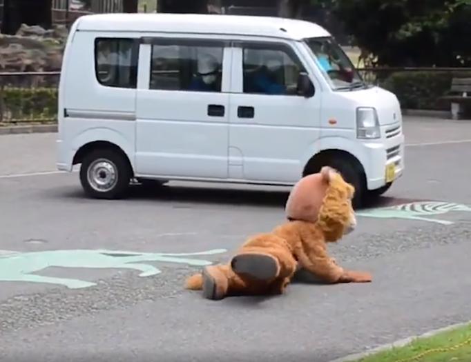 上野動物園と多摩動物公園での着ぐるみを用いた「猛獣脱出対応訓練」が海外メディアでも話題に!