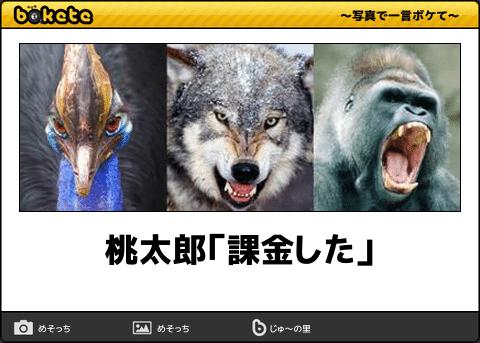 無課金・重課金ユーザーの画像でボケて(bokete)!まとめ:桃太郎「課金した」