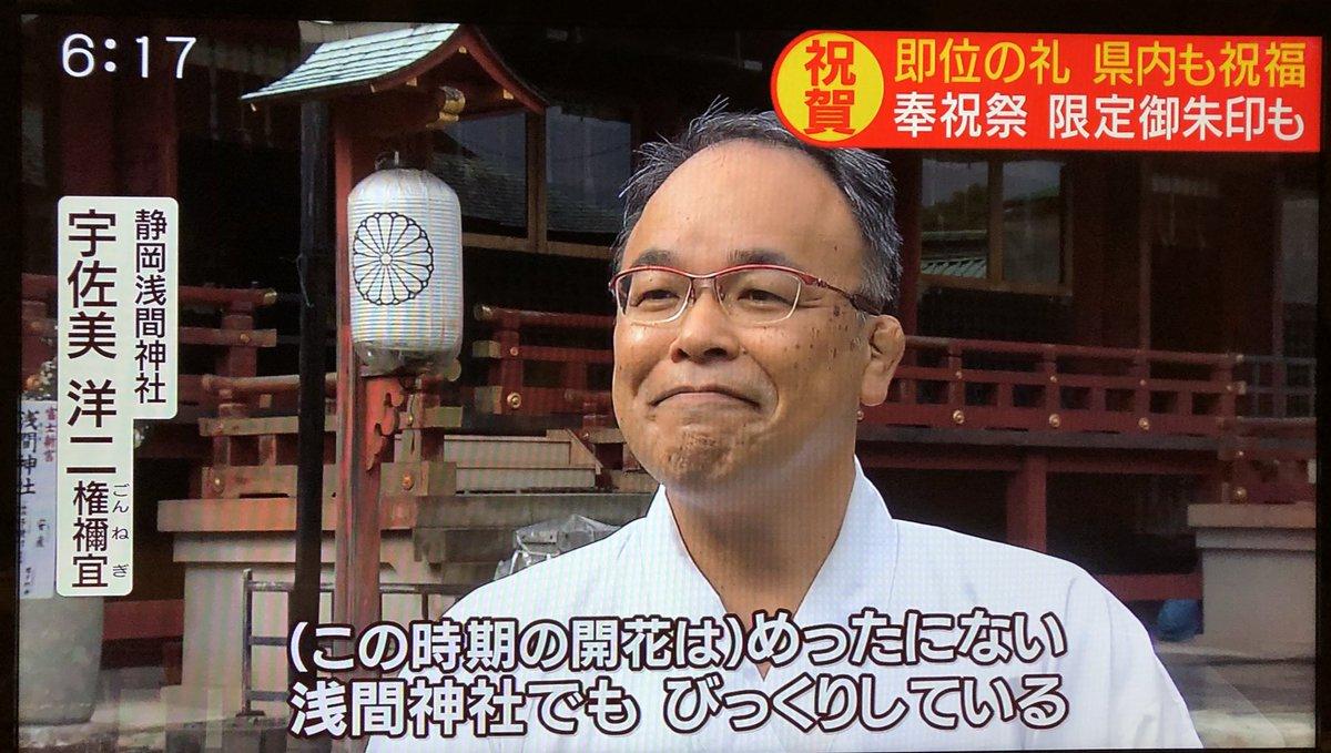 天皇陛下の即位礼正殿の儀のタイミングで静岡浅間神社で桜が咲く奇跡!