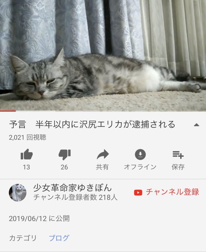 沢尻エリカ容疑者のプロフィール