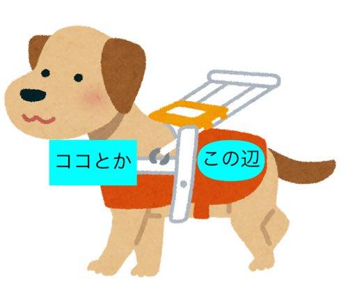 ELMu147U【拡散希望】介助犬が1匹で近づいてきた時は飼い主の危機を伝えたい時です決して追い払わず怖がらないで下さい。YAEAvh4