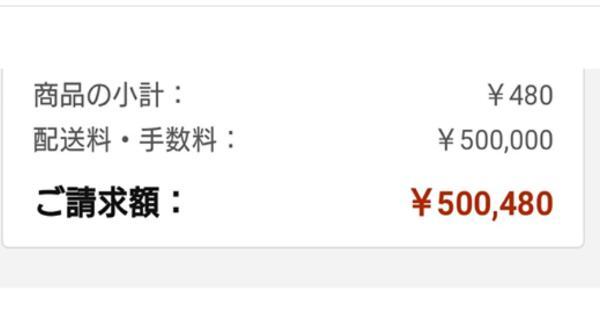 Amazonで、子供の為にマスクを注文したら480円のマスクが送料50万円で請求された