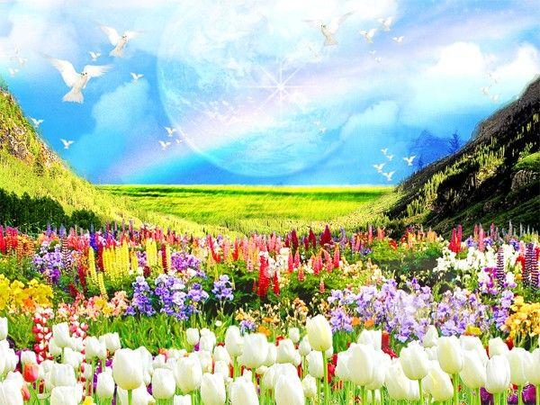 亡くなった人のことをこの世の誰かが思いだすと、天国でその人の周りに綺麗な花が降ってくる