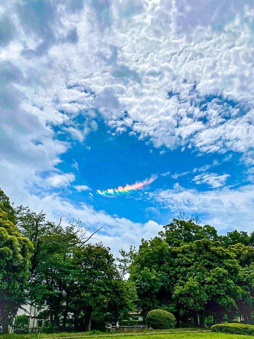 東京上空に現れた虹色の雲「環水平アーク」が美しすぎる!