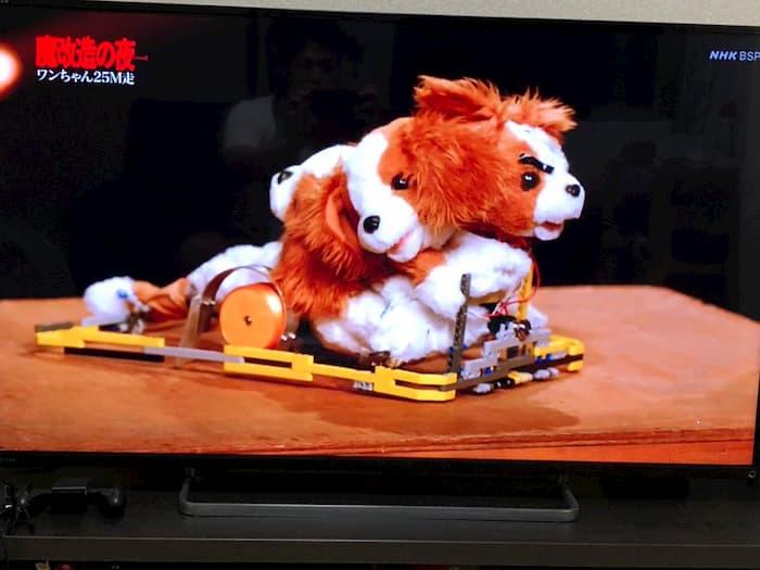 トヨタの技術者がワンちゃんのおもちゃを魔改造して「魔獣キングスパニエル」として走らせるNHK BSの「魔改造の夜」が面白すぎる!【動画有】