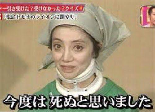 松島トモ子さんの公式ブログのタイトル「ライオンの餌」が攻めすぎてると話題に!