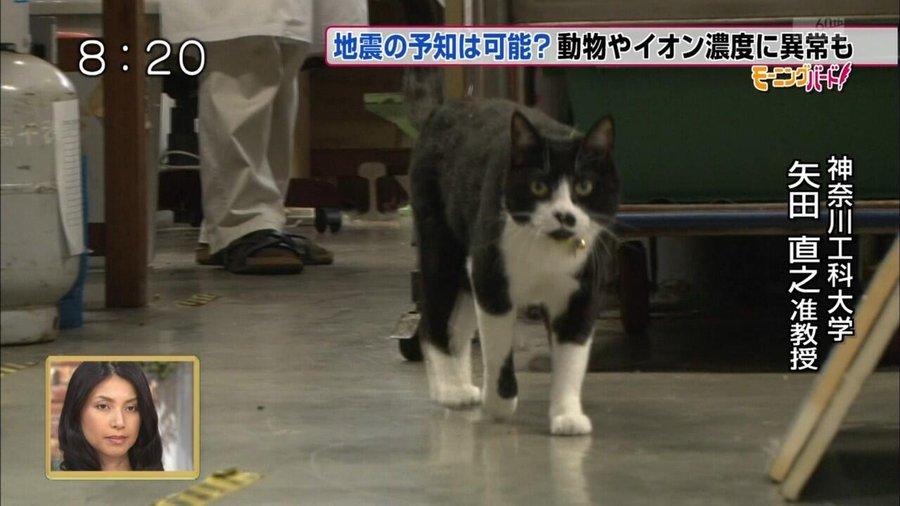 【爆笑】面白い画像まとめ:矢田直之准教授