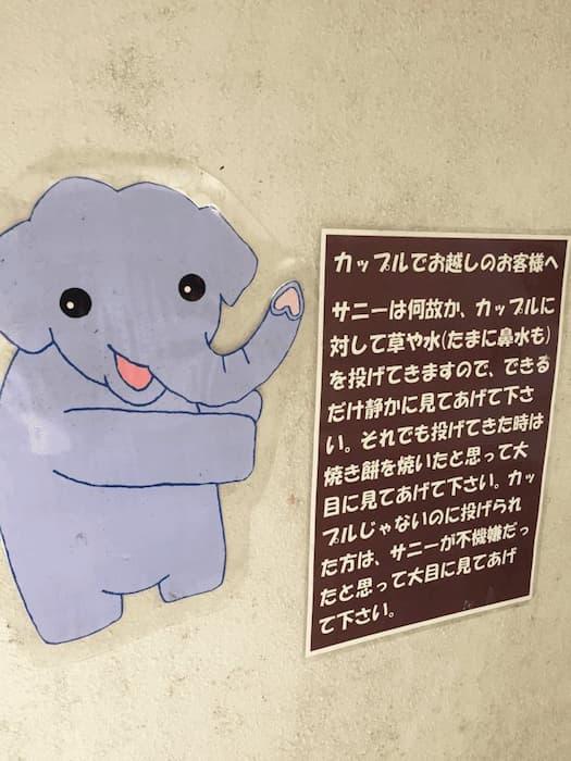 【爆笑】面白い画像まとめ:リア充カップルを絶対に許さない象