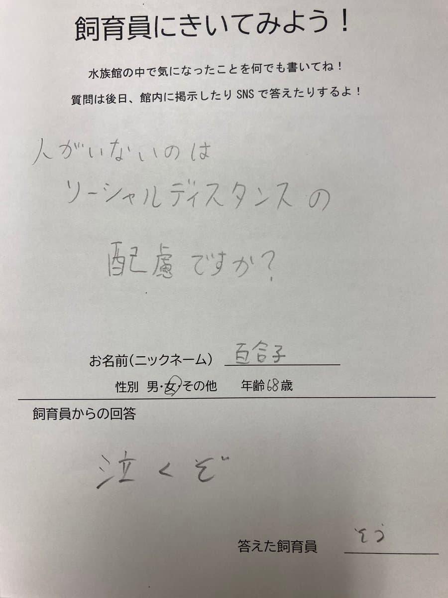 水族館の質問コーナー「人がいないのはソーシャルディスタンスの配慮ですか?」に対する回答が面白い