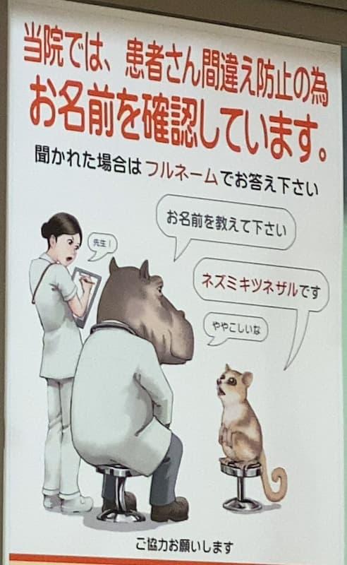 患者さん間違え防止のため、お名前を教えてください→ネズミキツネザルです。