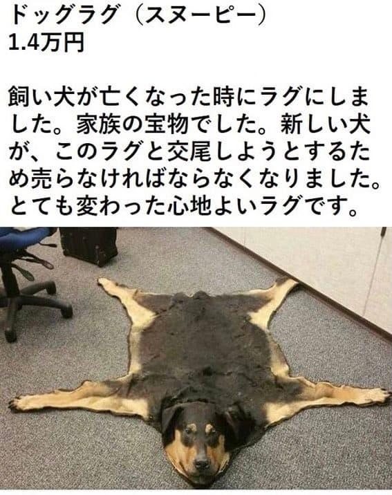 ドッグラグを出品した理由「新しい犬がこのラグと交尾しようとするため」が狂ってると話題にwww