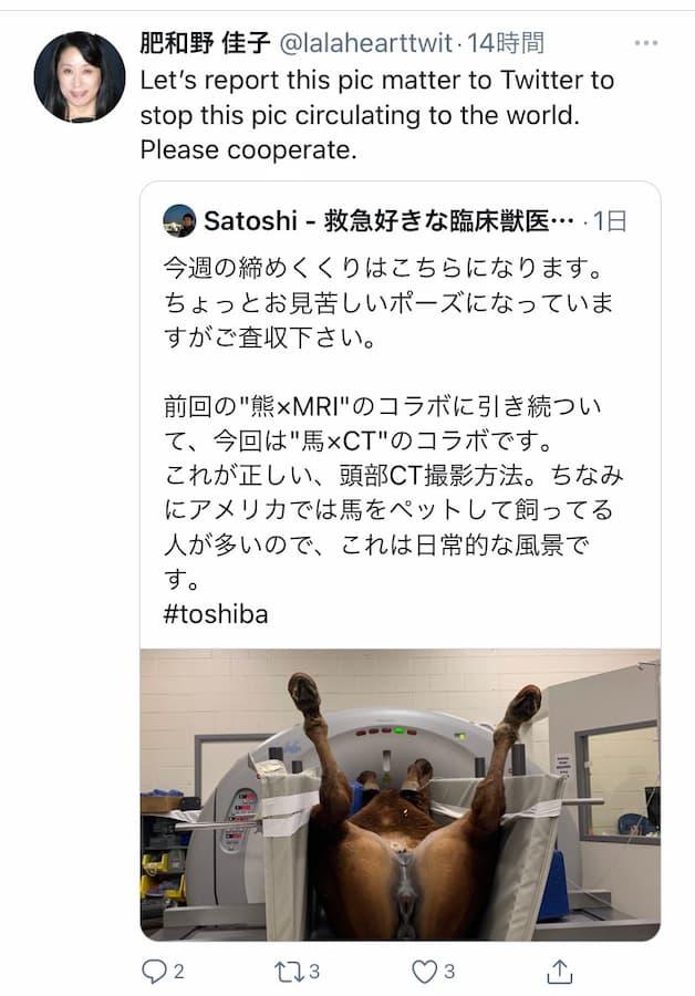馬のCT検査について馬にも基本的馬権があると肥和野佳子さんが主張!