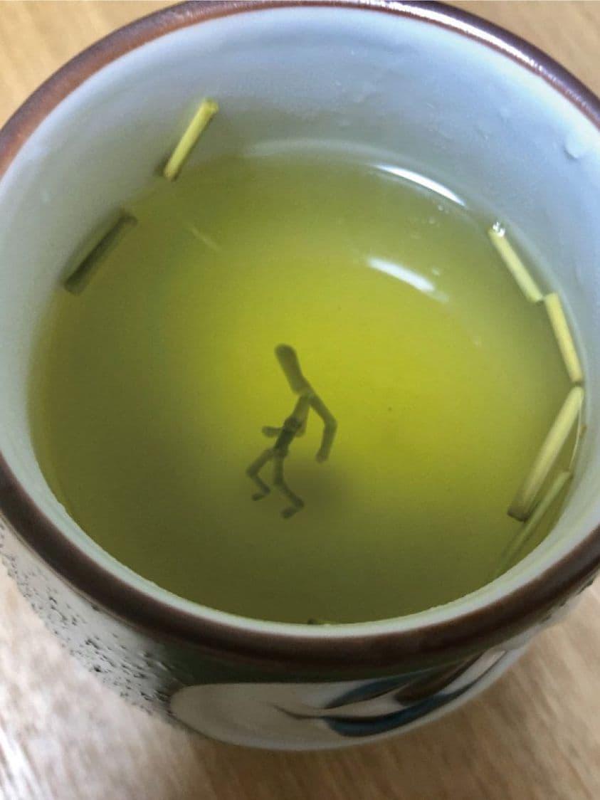 ジョジョ立ちした茶柱