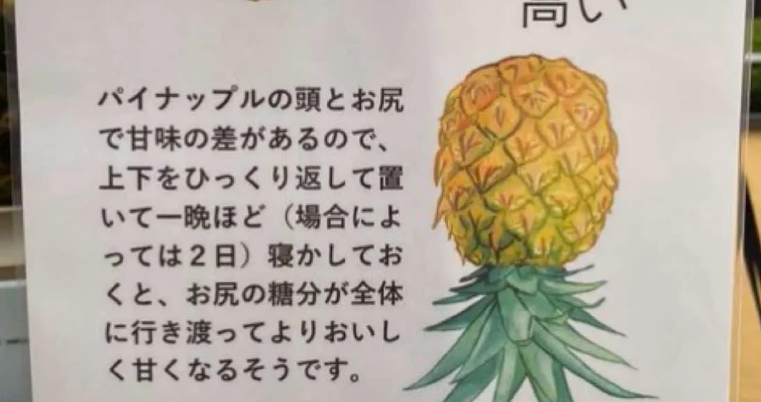 台湾パイナップルの叡智を世界に捧げる。