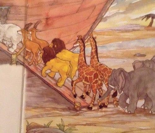 宗教勧誘の人が置いていったノアの方舟の挿し絵、たてがみのあるライオンが二頭いて繁殖不可能になってたwww