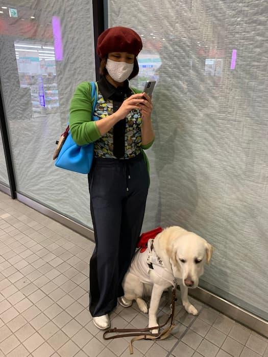 「盲導犬連れてるのにスマホ見てるの何で?」→目の情報だけでごまかされることって本当に世の中たくさんありますね